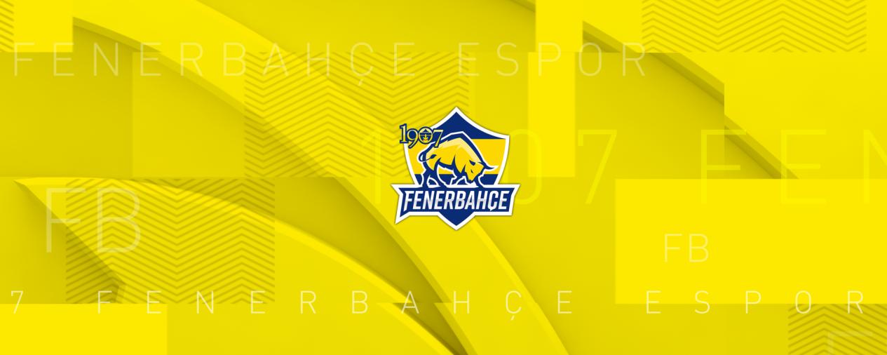 1907 Fenerbahçe Espor background