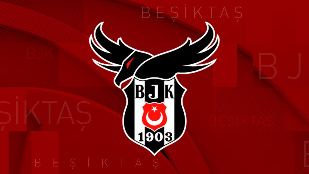 Beşiktaş Akademi background