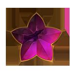 O Sonho badge