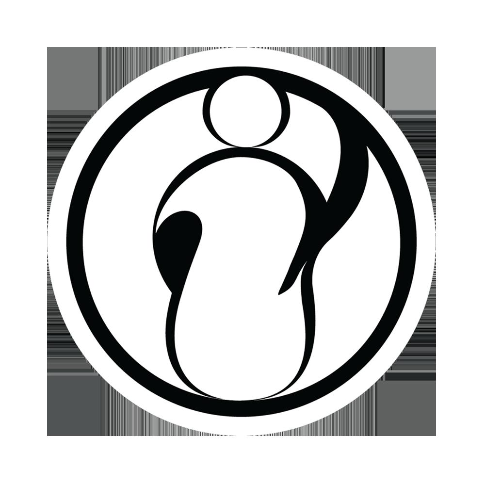 Resultado de imagen de invictus gaming  logo